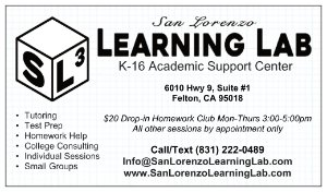 Learning Lab business card ad 1